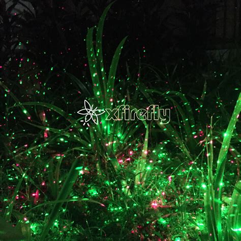 do you really know about firefly xlaserlight