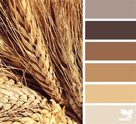 28 paint color wheat image gallery wheat color wheat tones design seeds oklahoma wheat