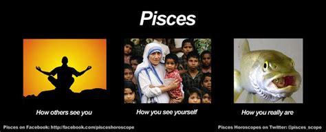 Pisces Meme - funny pisces meme zodiac memes pinterest