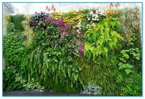 best plants for vertical gardens