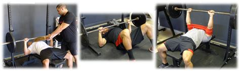 slingshot bench band slingshot bench press band 28 images super pro slingshot bench press gym