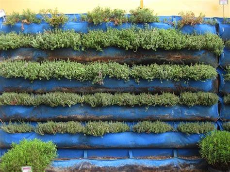 herb garden wall vertical herb garden nifty homestead