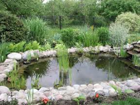 file garden pond 2 jpg