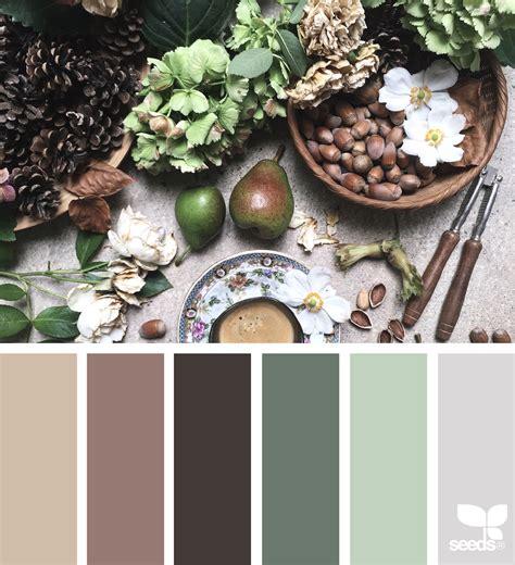foraged hues design seeds
