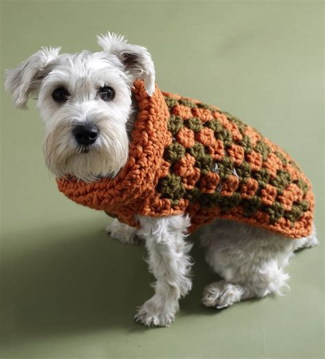 Free Crochet Pattern For A Dog Coat | keep your dog warm with a crochet dog sweater crochet