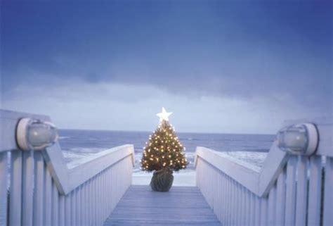 fotos de arboles de navidad originales