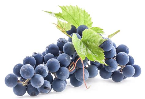 best grape seed opc grape seed for diabetes cancer and more