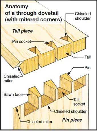 joint layout plan anatomy of a dovetail http www woodworking com ww