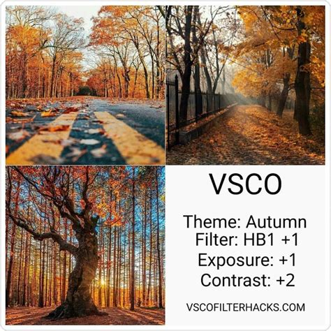 vsco nature tutorial 1308 best grunge photography images on pinterest vsco