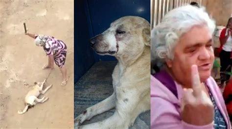 mujer se pega con perro mujer se pega con su mascota mujer se pega con el perro