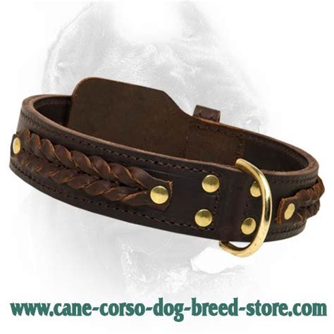 Handcrafted Leather Collars - new corsos breed soft neck collars walking braided