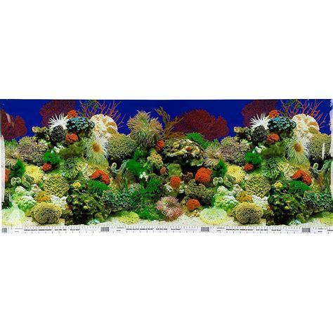 aquarium design centre ebay petco double sided aquarium background ebay