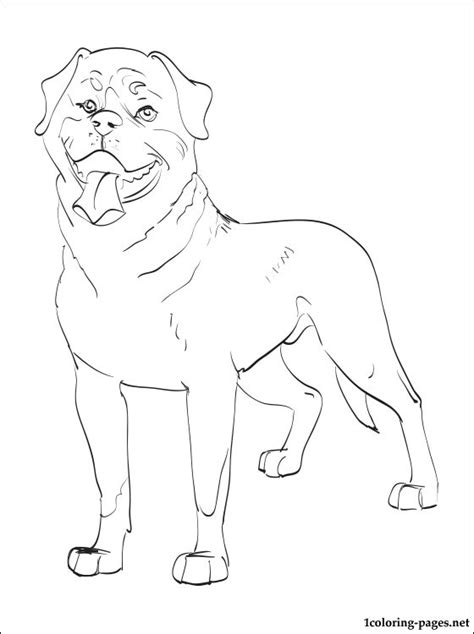 rottweiler coloring book rottweiler puppy coloring pages