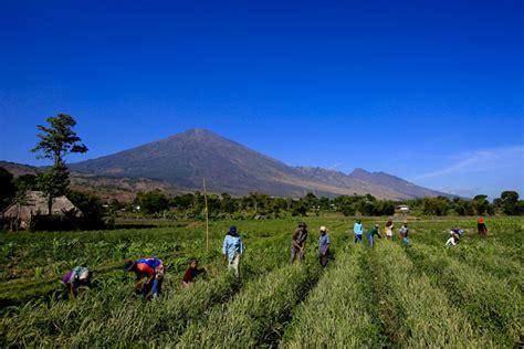 wisata lombok sembalun