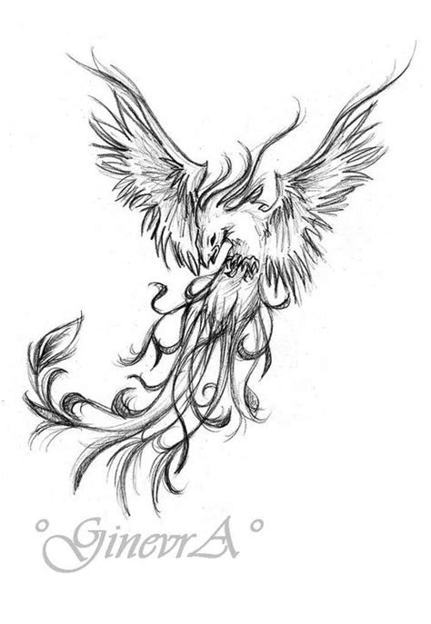 phoenix tattoo designs tumblr phoenix drawing tumblr clipartxtras
