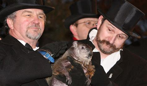 groundhog day live how accurate are punxsutawney phil s groundhog day forecasts