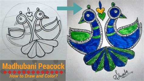 madhubani peacock   draw  color diy youtube