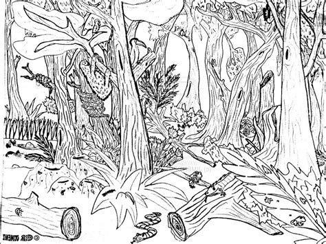 Rainforest Colouring Page Simple Forest Drawing 9 Pics Of Forest Background Coloring by Rainforest Colouring Page