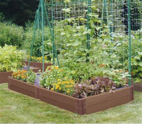 What To Plant In A Small Vegetable Garden Planting A Vegetable Garden In 6 Easy Steps Home Owner Care
