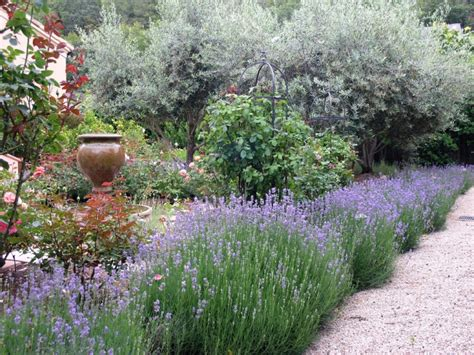 17 Lavender Garden Designs Ideas Design Trends Lavender Garden Ideas