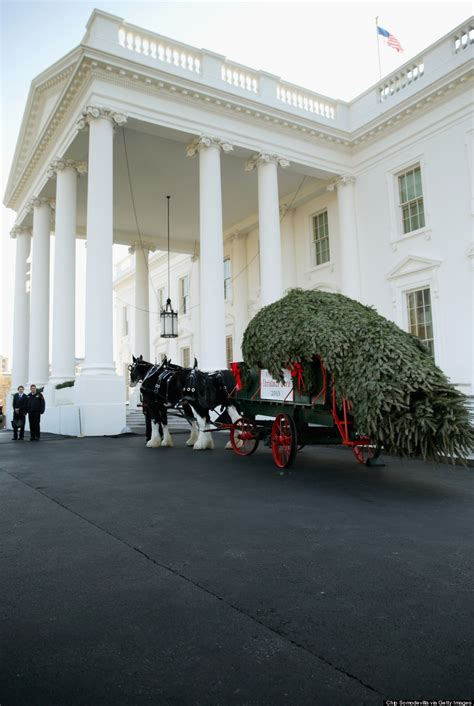 michelle obama daughters receive white house christmas
