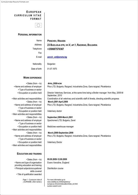 European Resume Template european resume template free sles exles
