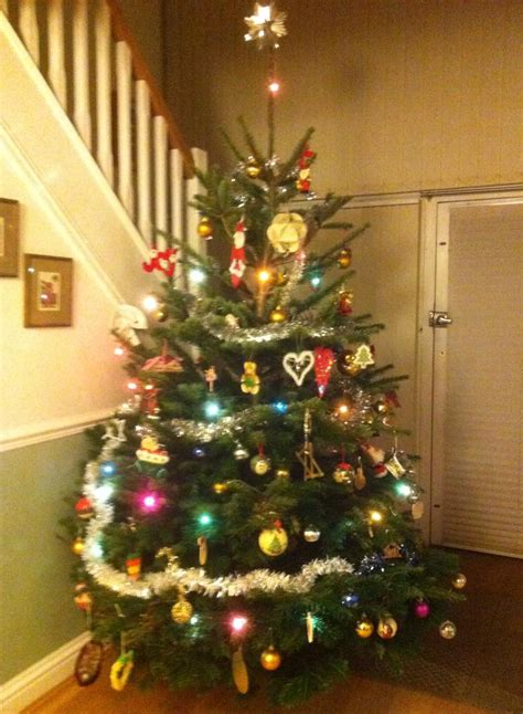 pictures on christmas tree sale 2014 easy diy christmas