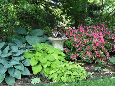 shade garden plans smart design tips and ideas for a shaded garden