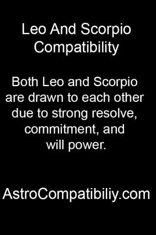 leo man scorpio woman in bed related keywords suggestions for leo and scorpio friendship
