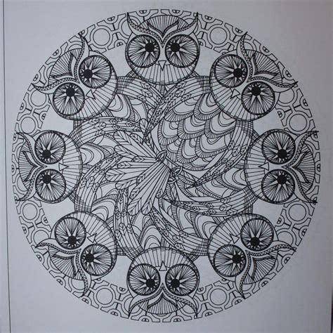 intricate owl coloring pages 1000 images about desenhos para colorir on pinterest