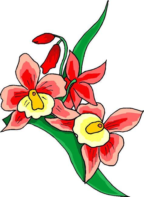 clipart fiori matura fiori 16 clipart della natura