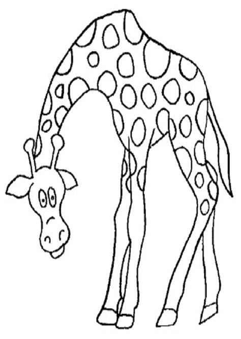 imagenes para colorear jirafa animales salvajes dibujos para colorear