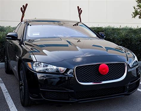 car reindeer antlers nose window roof top front