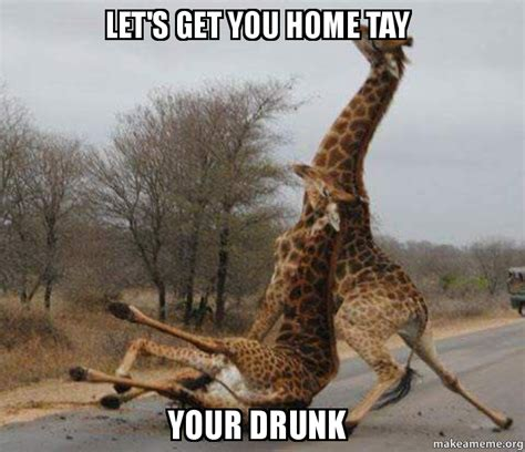 Drunk Giraffe Meme - let s get you home tay your drunk make a meme