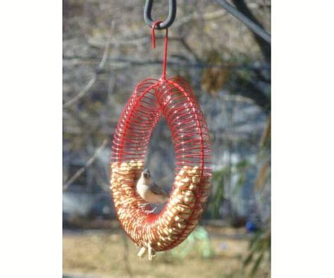 whole peanut wreath ring bird feeder red best seller