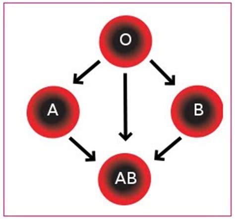 Serum Golongan Darah biologi gonzaga tranfusi darah