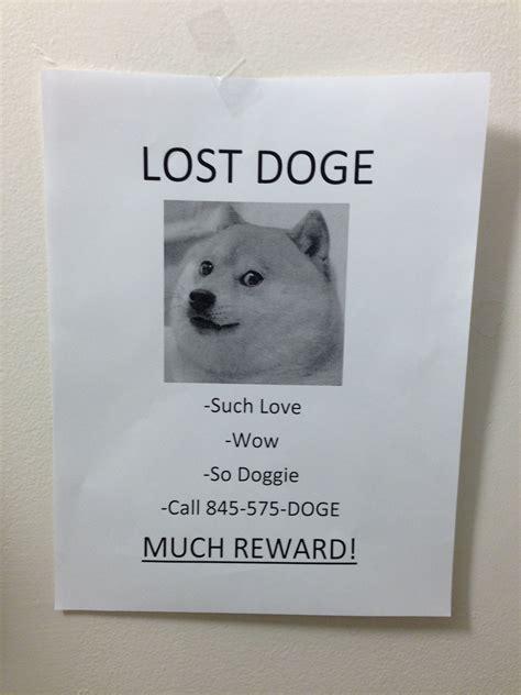 Lost Doge Meme - saturday morning funnies this week in internet memes