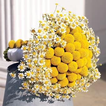 fiori a palla fiori gialli matrimonio foto matrimonio