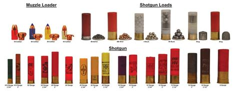 different types of ammo and caliber my yahoo image