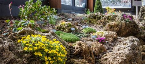 Betty Ford Alpine Gardens by Betty Ford Alpine Gardens World S Highest Botanic Garden