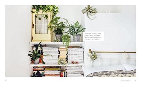 a guide to indoor gardening cnn living with plants a guide to indoor gardening gifts