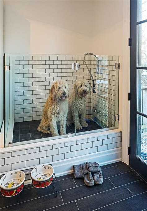 dog showers bathtubs she remodeled her laundry room for her dog now i m never
