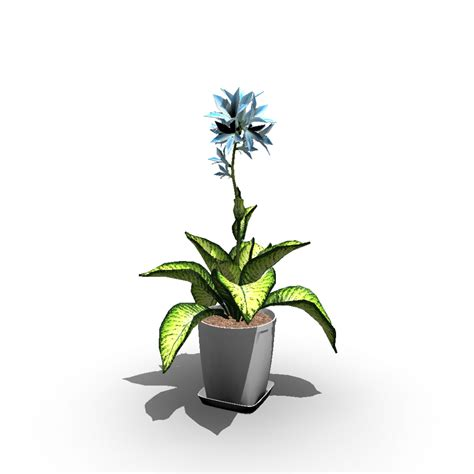indoor plant design indoor plant design and decorate your room in 3d