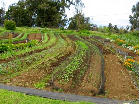 ploughing on contour small farm forum at permies