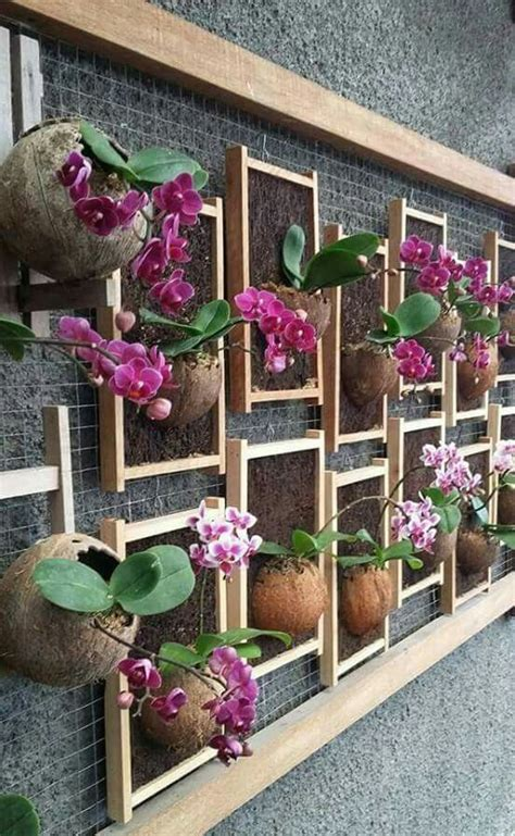 how to decorate a garden orchid flowers quot hobby decor quot instagram com hobbydecor decor
