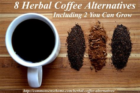 Coffee Drink Herbal 8 herbal coffee alternatives including 2 you can grow