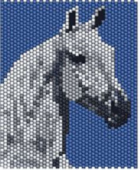 strumming pattern for white horse 1000 images about pb horses animals on pinterest
