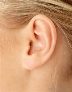 What Can You Use To Clean Out Your Ears by How Do I Treat Dry Skin In The Ears With Pictures