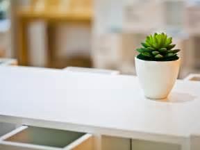Computer Desk Background 3d Computer Background Green Plant On White Desk