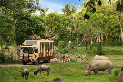 best safari park bali safari and marine park putu bali tour guide